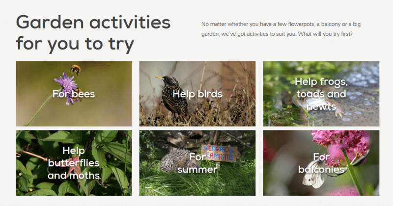 Give Nature a Home in Your Garden Your Personal Plan - The RSPB