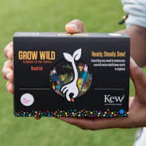 Kew Garden Pack of Seeds