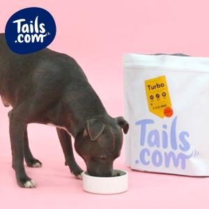 free-tails-dog-food